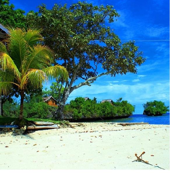 Resort Poya Lisa, Indonesia - Alltour.it